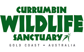 currumbin-wildlife-sanctuary